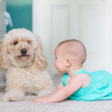 huisdieren-en-kinderen