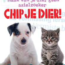 Chippen