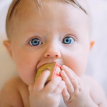 biologische-babyvoeding